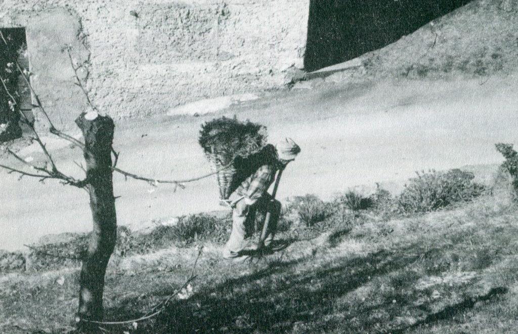 1.2 - Contadino con la gerla sui monti di Tirano. Foto di J.Templeton